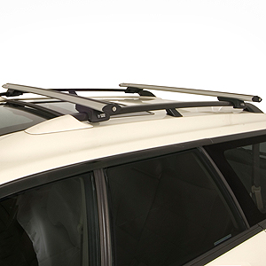 Rhino-Rack sxb-silv Series Silver Raised Railing Mount Aero Crossbar Car Roof Rack